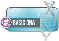 Basic DNA - ONLINE